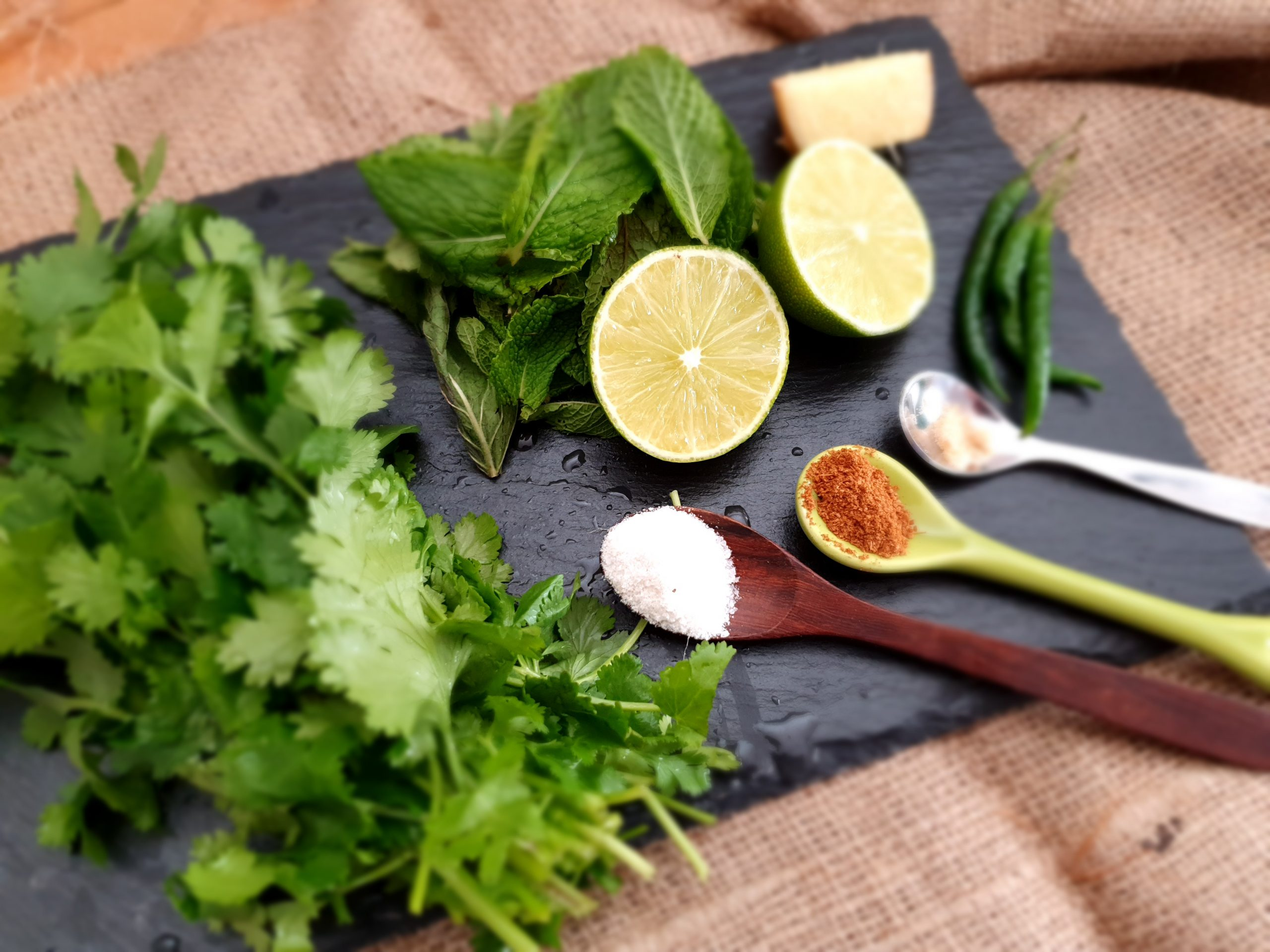 Mint Coriander Chutney/Green Chutney